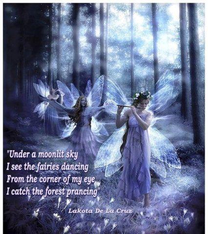 under a moonlit sky too