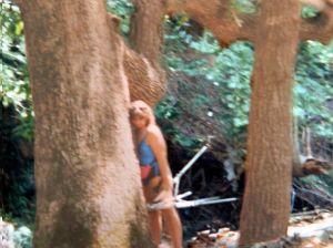 070191hugging a tree