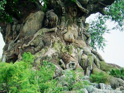 TREE ANCIENT