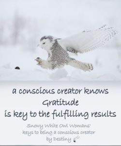 a-conscious-creator-knows-gratitude-is-the-key-to-a-properous-journey